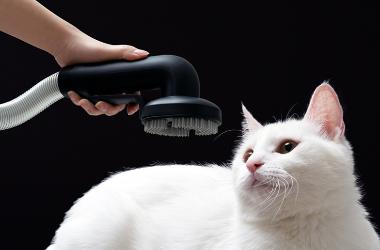 家里养宠物-哪款家用无线吸尘器好用